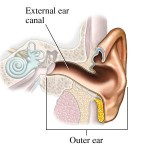 Hearing Problems And Diseases