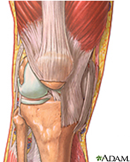 Knee Problems And Disorders