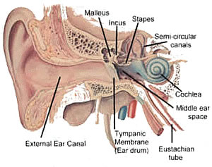 Ear Pain When Swallowing